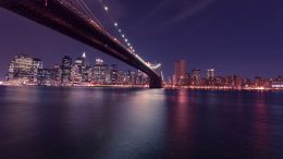 ponte brooklyn