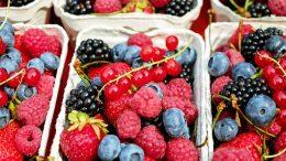 berries-1546125__340